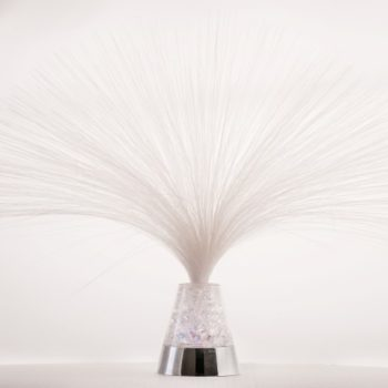 Fibre Optic Light (Small)